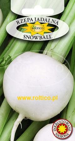 Rzepa jadalna Snowball