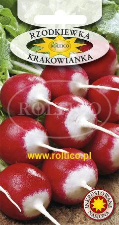 Rzodkiewka Krakowianka