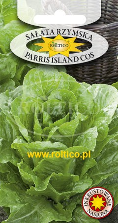 Sałata Rzymska Parris Island Cos